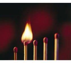 Global Non-halogen Flame Retardant Market